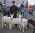 Kyrgyzstán 2010 - obrázek 15