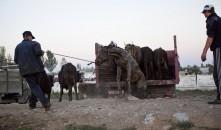 Kyrgyzstán 2010 - obrázek 16