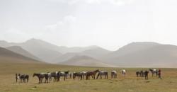 Kyrgyzstán 2010 - obrázek 23