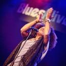 BLUES ALIVE Šumperk 2016 - obrázek 11
