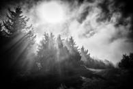 Ráno v Beskydech - obrázek 11