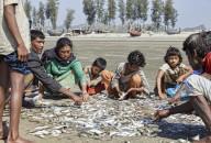 Bangladéš 2020 - obrázek 13
