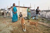Bangladéš 2020 - obrázek 47