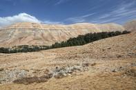 Libanon 2019 - obrázek 39