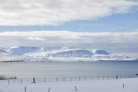 Island 2019 - obrázek 11